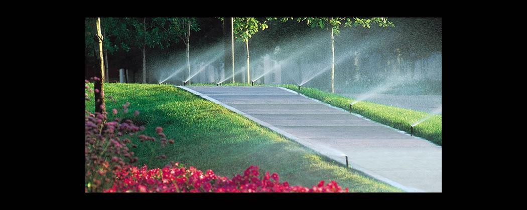 Willamette Valley Landscape Management Sprinkler System